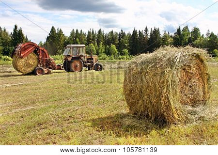 Cutting Hay, Countryside Landscape, Round Straw Bales In Harvested Fields.