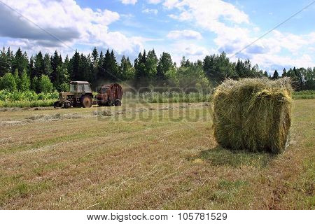 Harvesting Hay, Fresh Round Hayrick, Farmer Tractor Working On Hayfield.