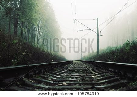 landscape outside the town with the railway in the forest in the fog