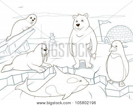 Arctic animals coloring book educational game
