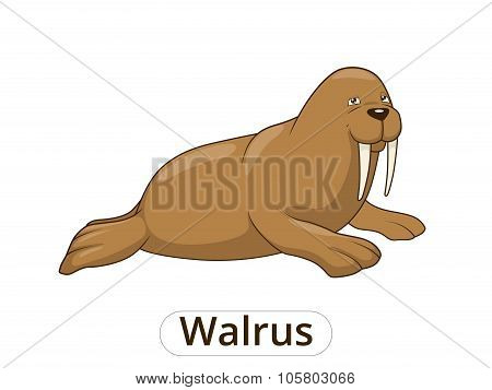 Walrus cartoon vector illustration