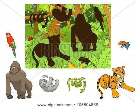 Jungle animals cartoon educational game vector