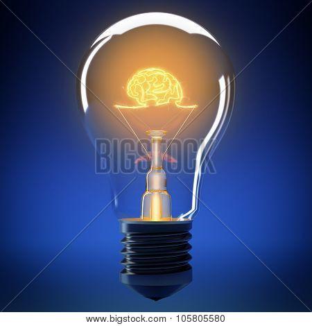 Bulb light brain