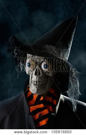 Skull wearing witches hat for Halloween