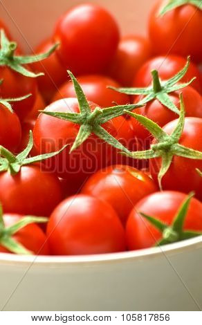 Freshly Picked Cherry Tomatoes