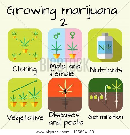 Marijuana growing set