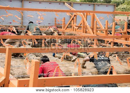 Tough Mudder 2015: Inches Of Wire