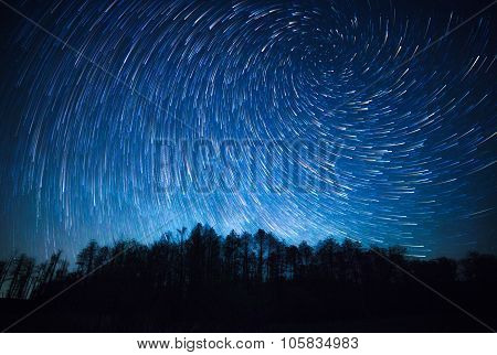 night sky spiral star trails and the forest