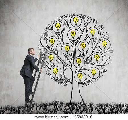A Handsome Entrepreneur Is Climbing To The Drawn Tree With Light Bulbs. A Concept Of New Business Id