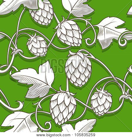 Hops ornament vector illustration