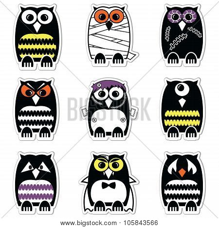 Halloween scary, spooky, mummy, cyclops, vampire. Monster, zombie owls in color in label style
