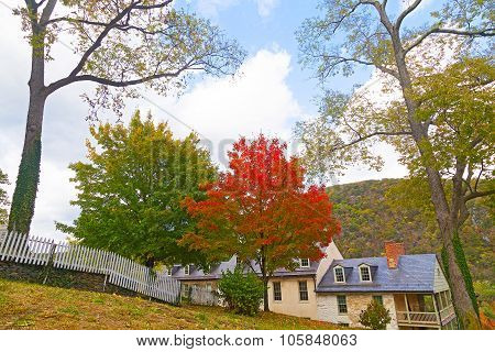 Trees in fall foliage with houses and mountains on background