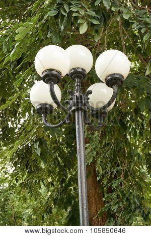 Old Lamp Post In Garden