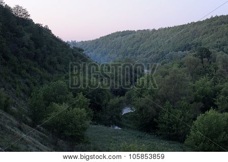 Green Trees On Hill Slope