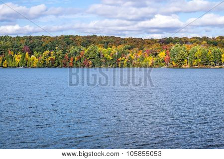 Colorful Trees in the Fall by a Lake