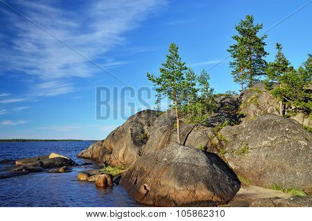 Karelian Landscape: Pines And Rocks. Russia