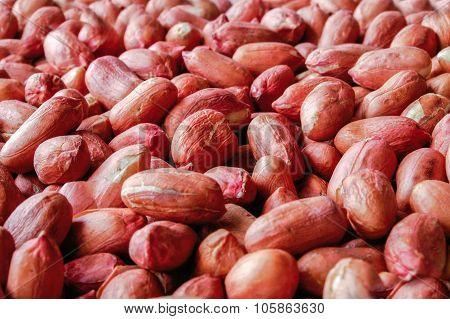 Peanut Red Background