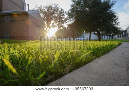 sunset over lawn background, warm concept