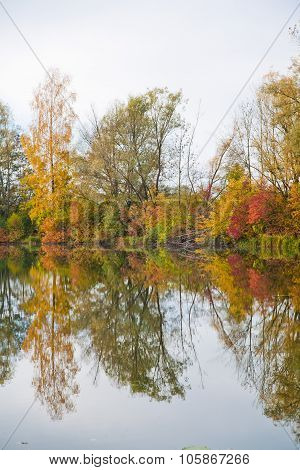 Autumn Trees Reflecting In A Lake