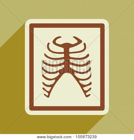Icon of X-rays of ribs in flat style