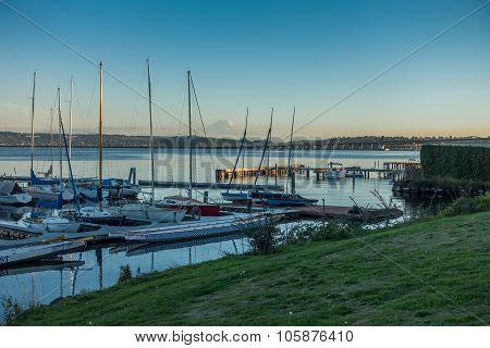 Along Lake Washington - Rainer 4