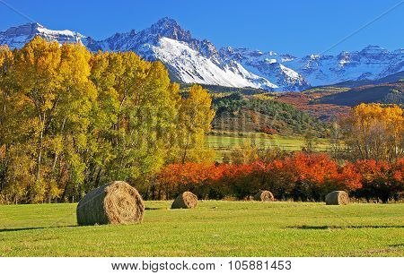 Autumn At Mount Sneffels
