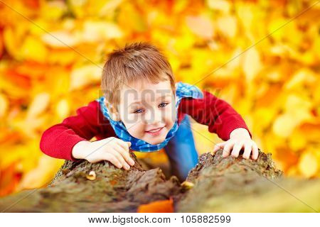 Smiling Kid, Boy Climbing A Tree In Autumn Park
