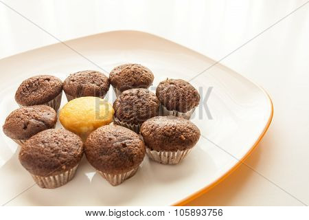 Tasty chocolate muffins with one cake muffin in center