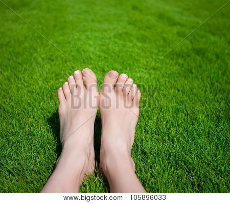 Woman legs on the grass