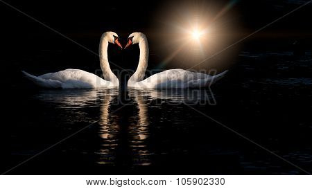 Two Swans Kissing