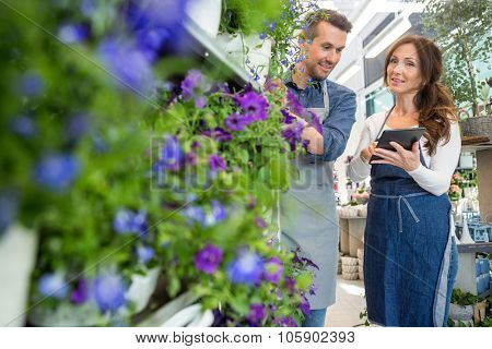 Male florist looking at female colleague using digital tablet in flower store