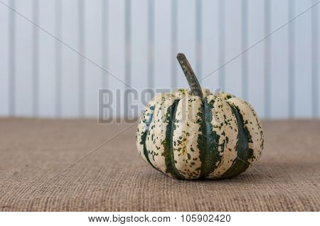 White and green Pumpkin with space for a text in rustic vintage style. Retro concept background. For