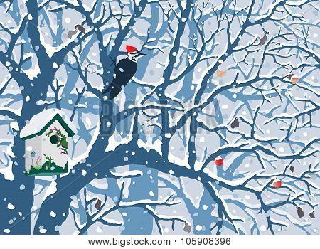 Winter Wonderland - First Snow.
