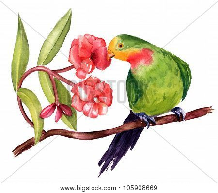 A watercolor drawing of a green parrot on a branch of pink flowers