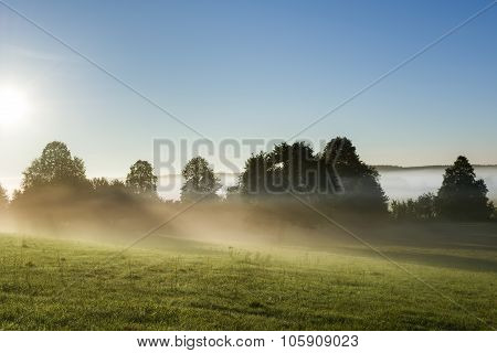 Morning Landscape View Across Foggy Meadow In Poland