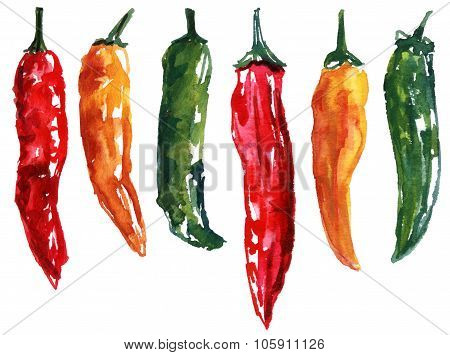 A set of six watercolour chili peppers on white background
