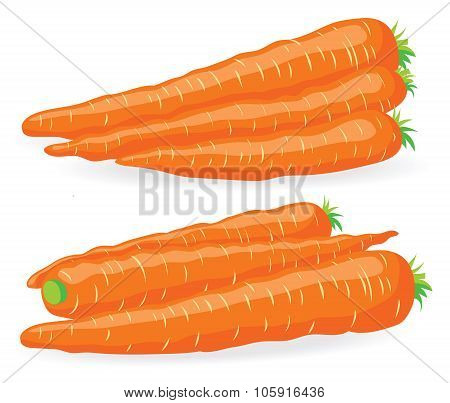 Two Heaps Of Fresh Carrot