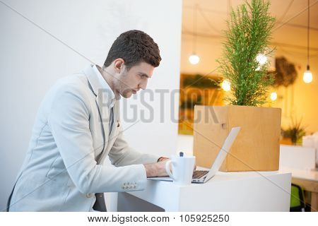 Man Using Laptop In White Office