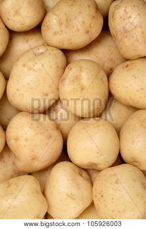 new potatoes background