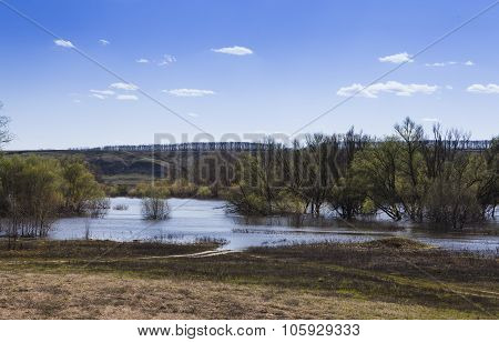 ecological catastrophy. spring flood of the river and the trees