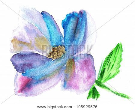 Watercolor illustration of stylized wild flower. Color illustration of flowers in watercolor paintin
