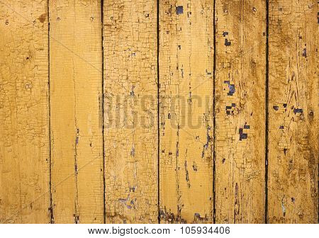The natural yelow wood texture background close up