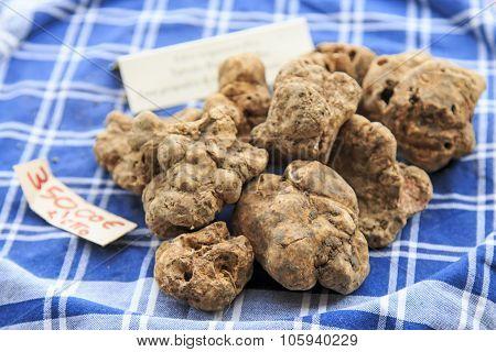 Closeup Of White Truffles