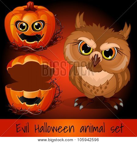 Open pumpkin and evil owl on a red background
