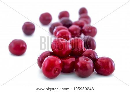 Ripe Cherry Isolated On White Background