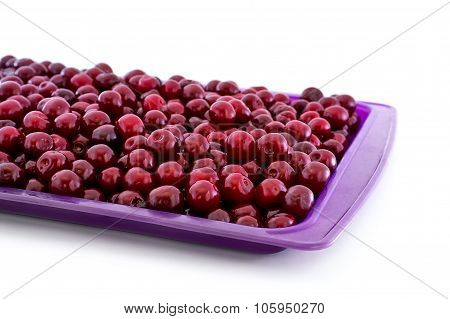 Ripe Cherry In Purple Pot Isolated On White Background