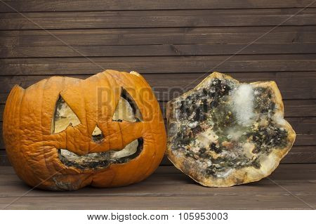 End of Halloween, moldy pumpkin. Remembering Halloween.