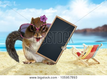 Funny Chipmunk On Summer Vacation Holidays Hold Empty Blank Banner Sitting On The Beach