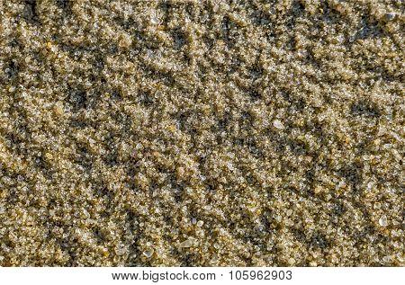 Natural river sand close up