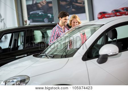 Couple in  car dealership saloon looking for a new car